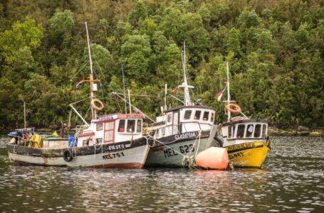 Diputados Aprueban Proyecto Del Gobierno Que Posterga Uso De Cámaras En Embarcaciones