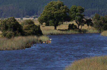SEREMI Del Medio Ambiente Da Inicio Al Proceso De Consultoría Para Delimitar Humedal Del Río Queule
