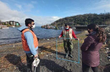 Muestreos Biológicos En Lago Villarrica Para Generar Un Plan De Descontaminación