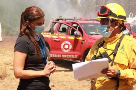Gobernadora Marchant monitorea incendio forestal que afecta a sector rural de Galvarino