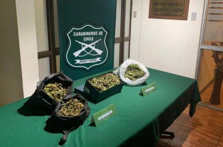 Carabineros del OS-7 decomisó 5.670 dosis de marihuana en Loncoche