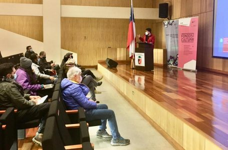 Seremi de las Culturas de La Araucanía capacita sobre Fondos Cultura 2022 a artistas y gestores de Malleco