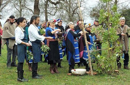 Iniciativa turística mapuche apoyada por CONADI será difundida por chef en programa de televisión gastronómico